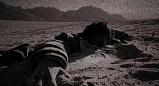 世界上有僵尸吗,揭秘5个真实的僵尸事件(僵尸军队所向披靡)
