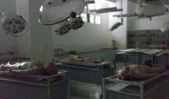 香港大学灵异事件,新生在解剖室被鬼上身啃食尸体