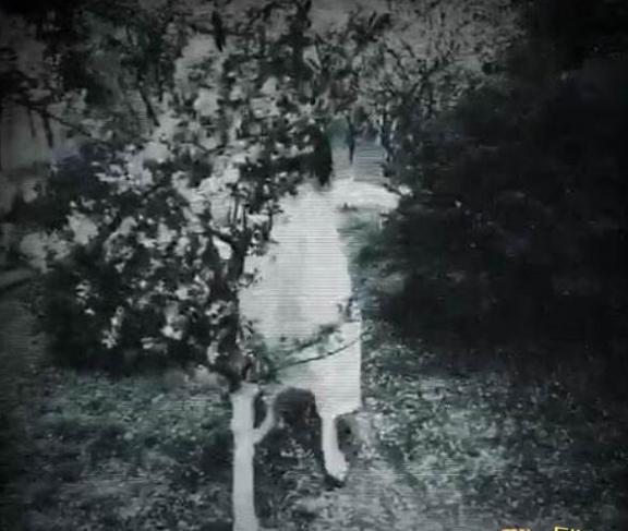 深圳仙湖弘法寺灵异事件,半夜看见白衣女鬼千万别回头