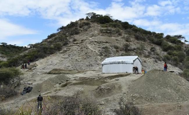 坦桑尼亚奥杜瓦伊峡谷发现200万年前石器及动物化石 证早期人类具备适应环境的能力
