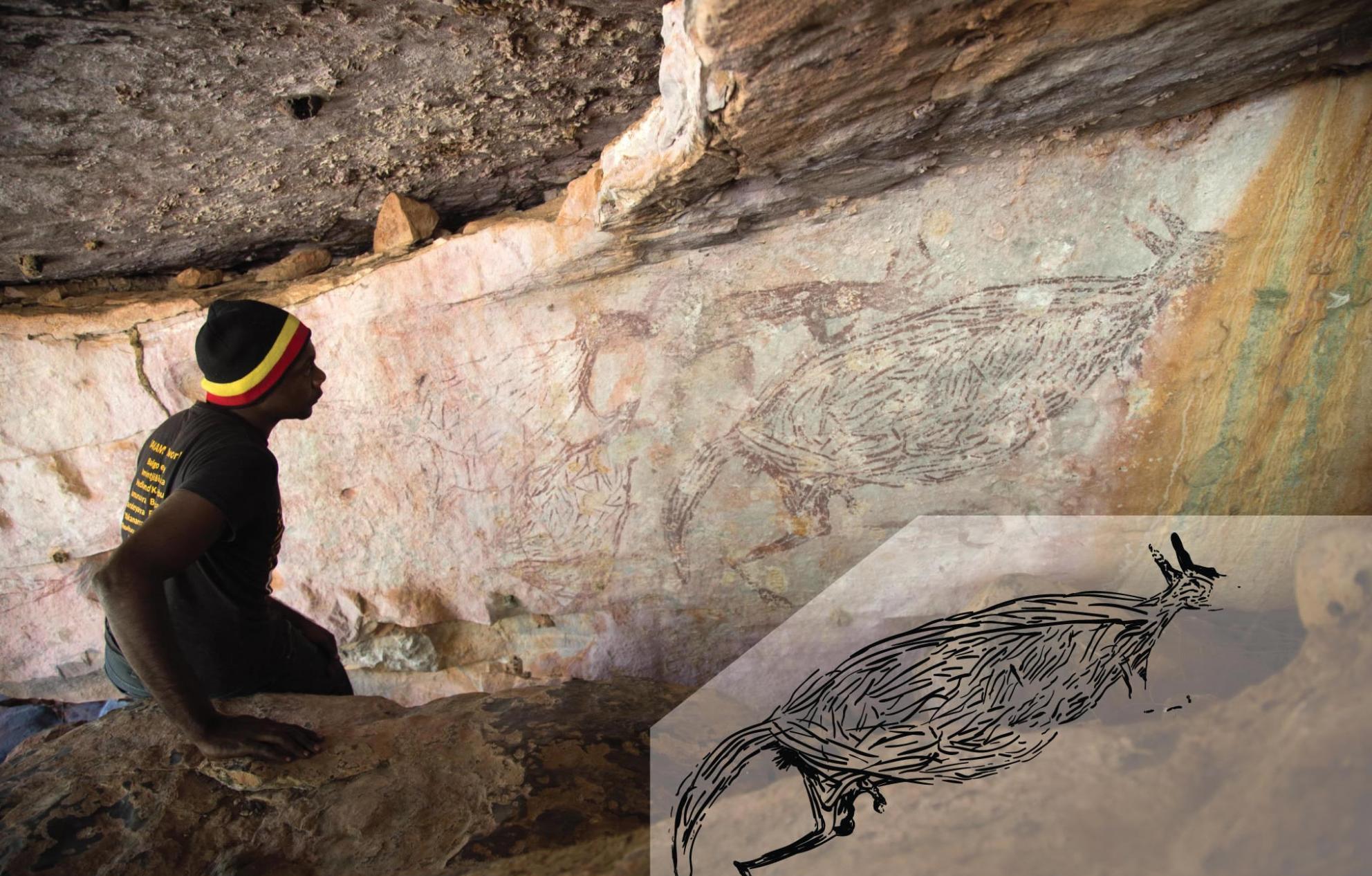 澳大利亚最古老的完整岩画――袋鼠画距今约1.73万年