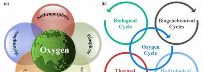 《中国科学:地球科学》:氧气循环和宜居地球