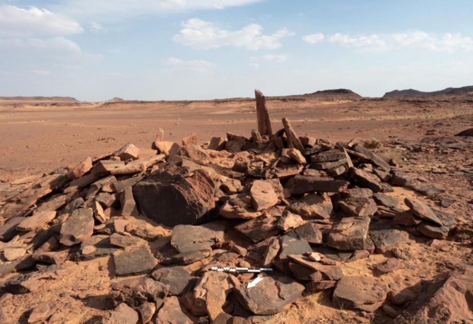 沙特阿拉伯王国西北部考古发现古代居民驯养狗的最早证据 可追溯到公元前4200-4000年