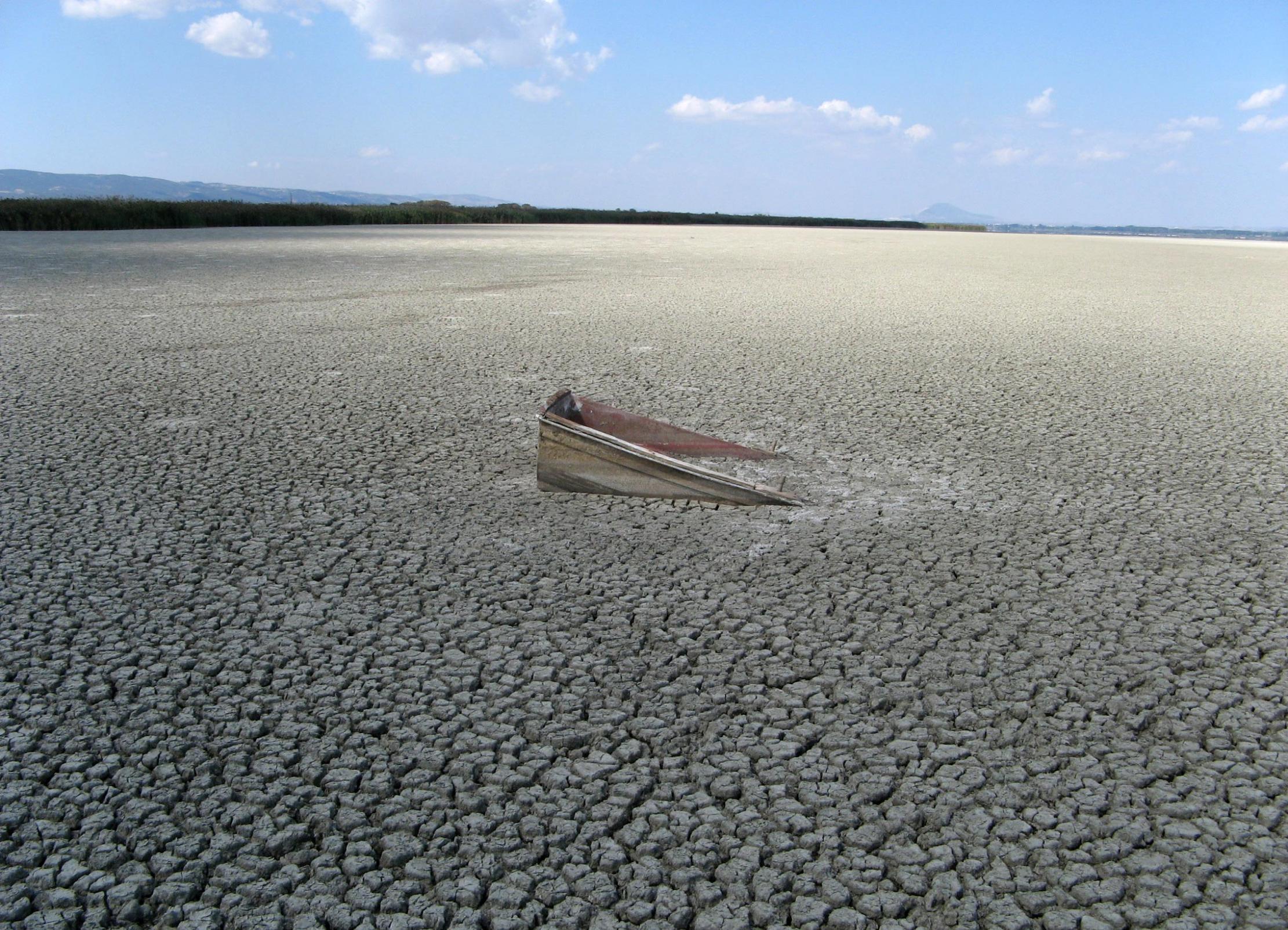 人类对淡水生态系统生物多样性的破坏需要几百万年时间来恢复